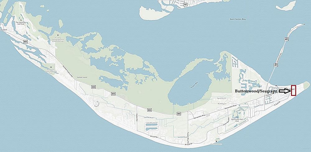 Buttonwood/Seagrape