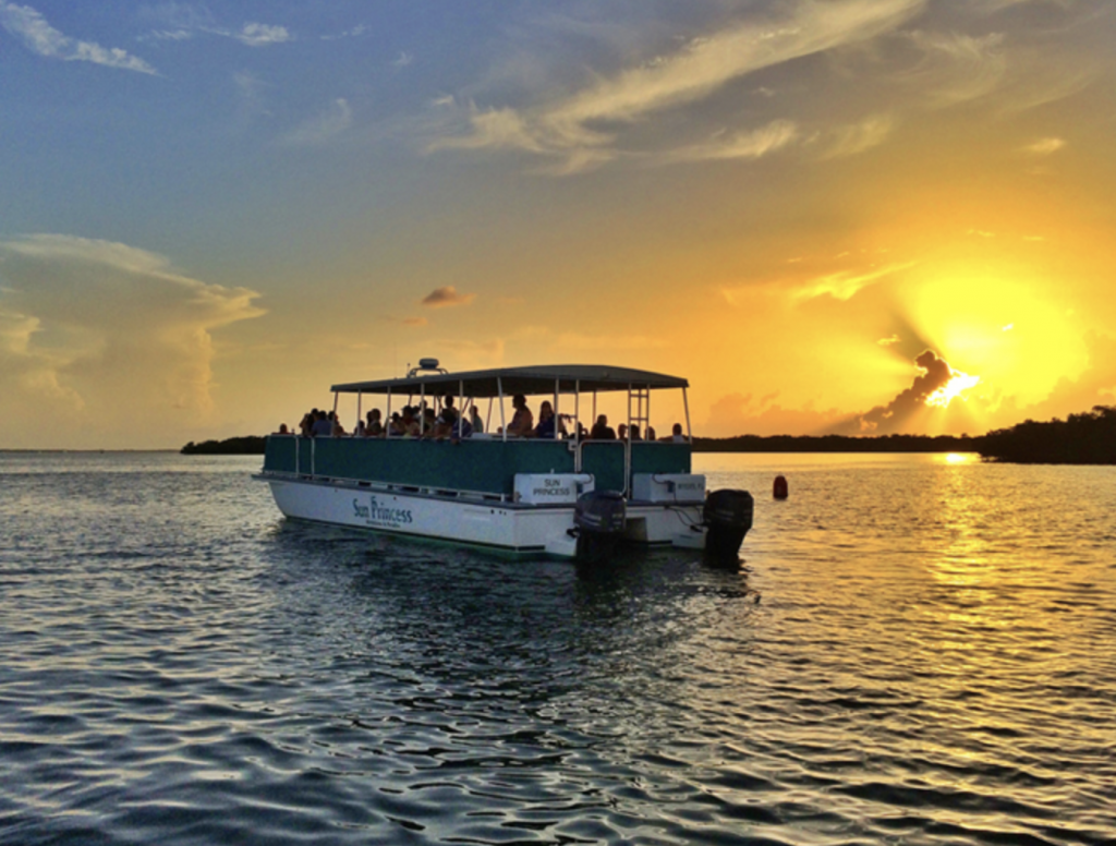 Christmas Eve Sunset Dolphin & Wildlife Cruise
