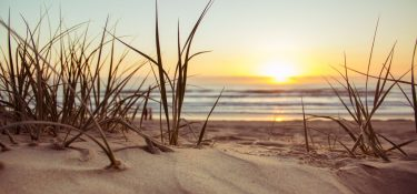 10 Reasons We Are Thankful To Live On Sanibel Island