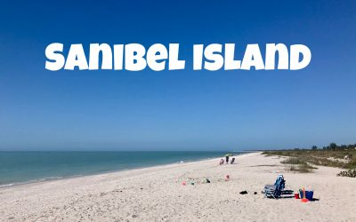 Everything You Need to Know About Sanibel Island