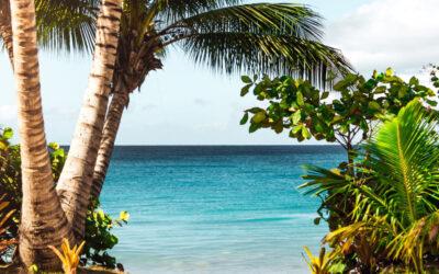 Buying a Property on Sanibel Island? Let us Help!
